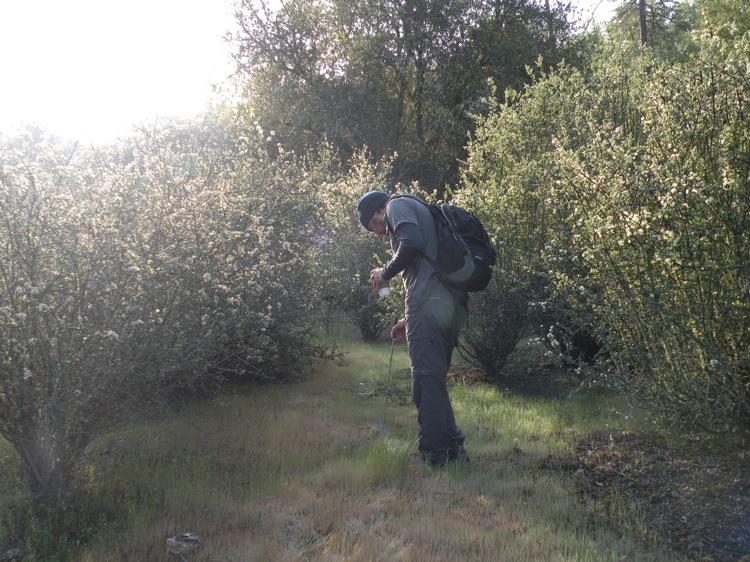 UC Berkeley student Ryan Turner in the field